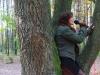 koncert-w-lesie-005-jpg