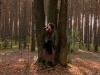 koncert-w-lesie-003-jpg