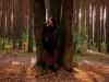 koncert-w-lesie-016-jpg